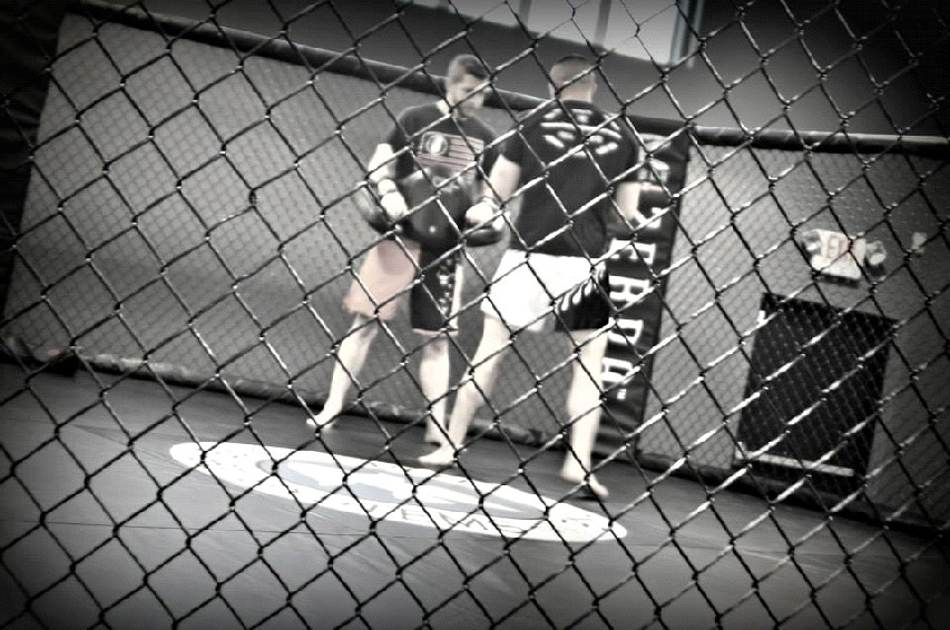 Mixed Martial Arts training in West Hartford CT - Best MMA in CT