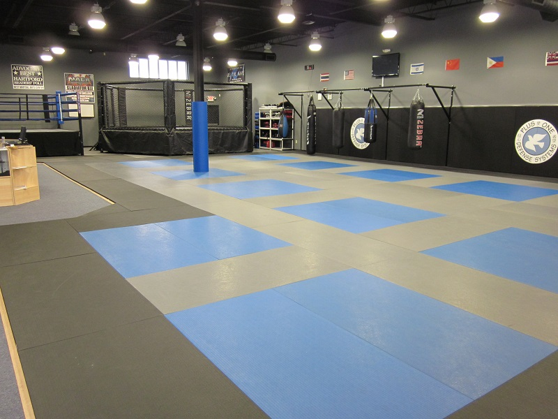 Plus One Defense Systems West Hartford Ct Martial Arts
