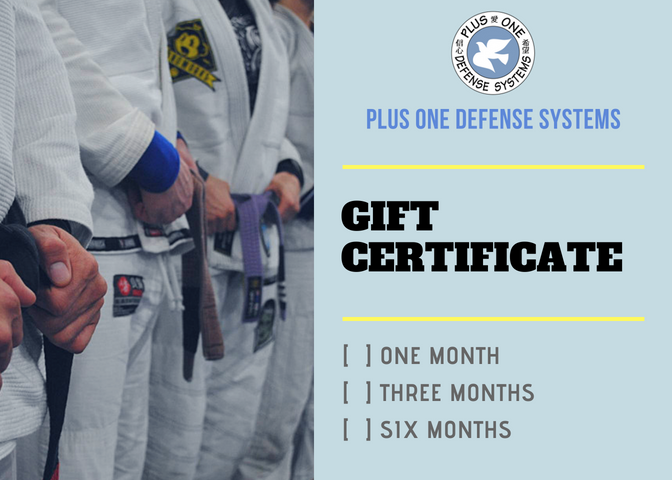 Martial Arts Gift Certificates now available online at teamplusone.com